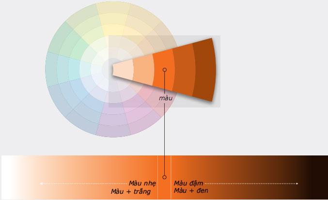 lý thuyết màu sắc quang cường độ