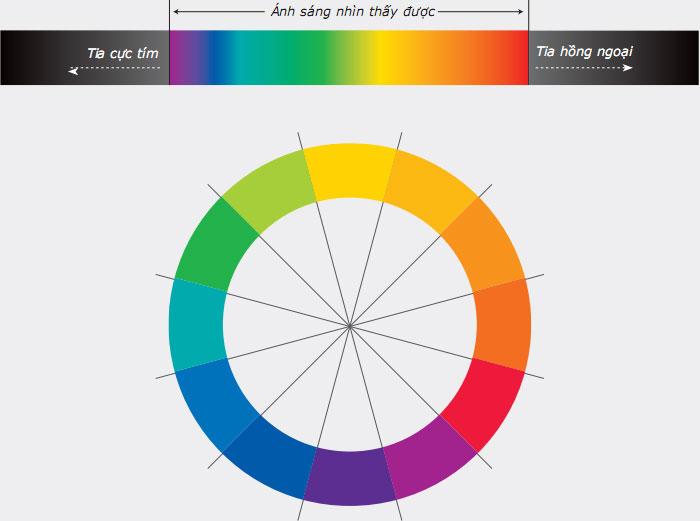 lý thuyết màu sắc vòng tròn màu thuần sắc